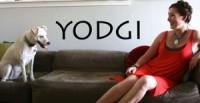 Yodgi